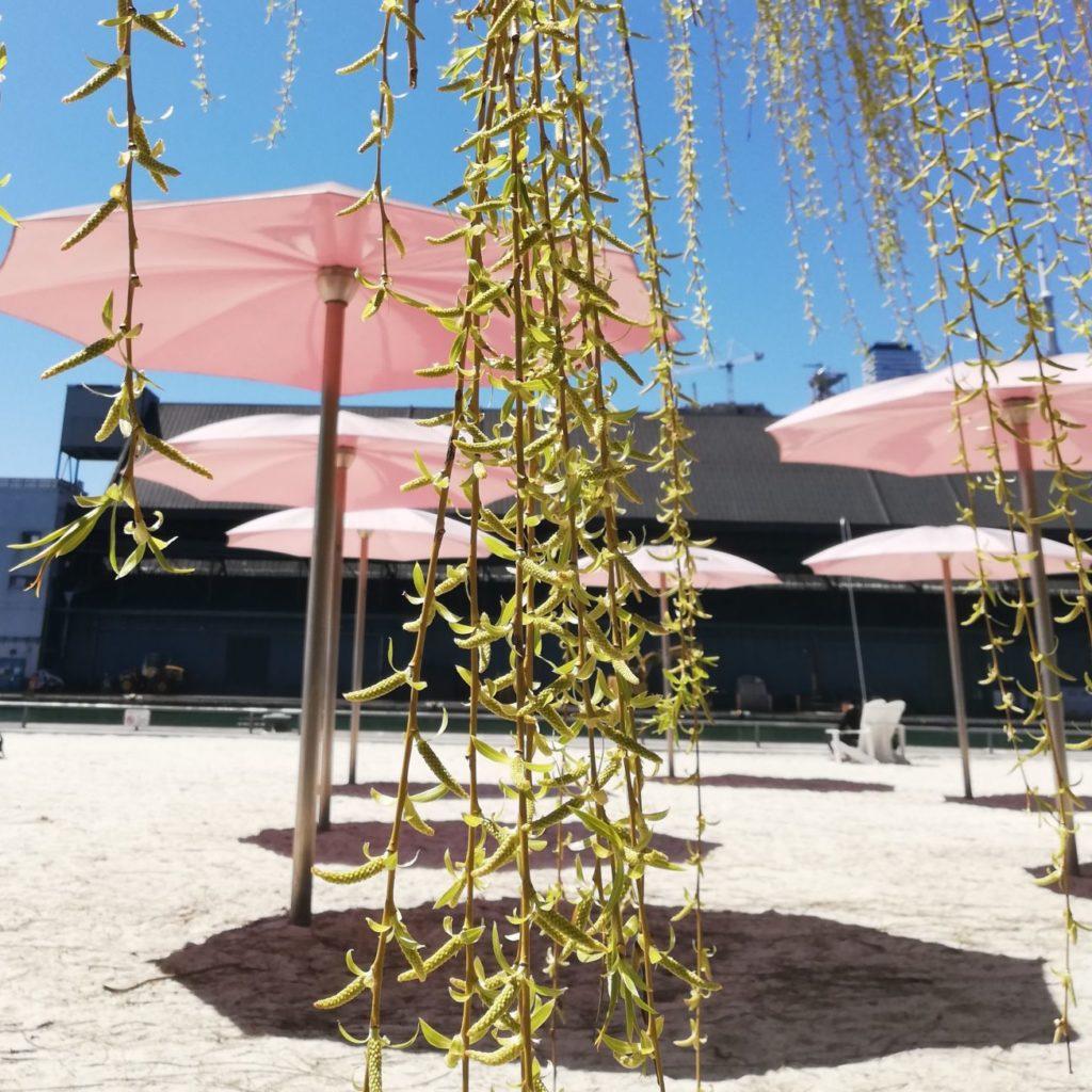 Sugar Beach Toronto - CultureLink Summer Settlement Program